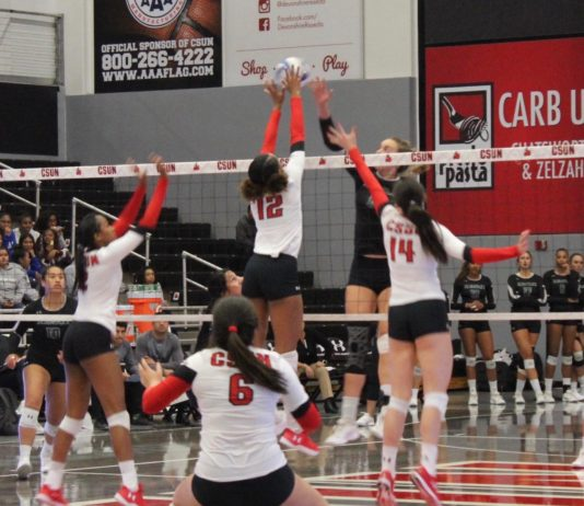 csun volleyball player