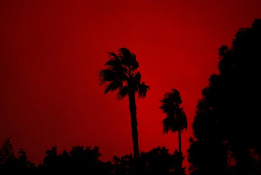Fire_10-10-19_SHammond.jpg