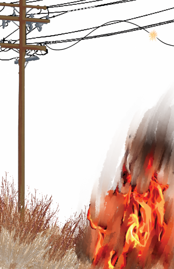 A wild fire drawing