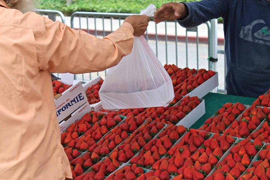 CSUN%27s+farmers+market+is+closed%3B+its+vendors+are+adapting