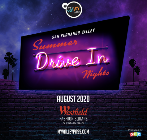 Poster of San Fernando Valley Drive In Nights