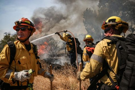 LAFD crews work to slow the spread of the fire in the Sepulveda Basin.