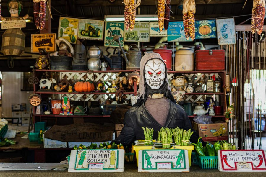 A halloween mannequin on display at the produce section in Tapia Brothers Farm in Encino, Calif., on Thursday, Oct. 29, 2020.