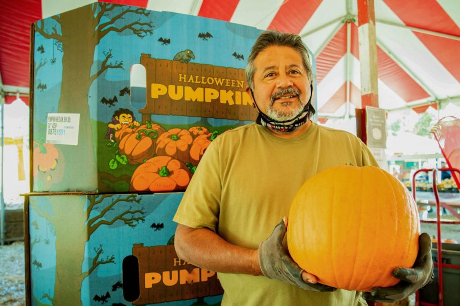 Tomas Tapia, owner of Tapia Brothers Farms, holds a pumpkin in Encino, Calif., on Thursday, Oct. 29, 2020.