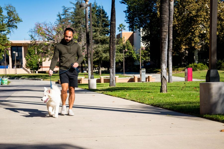 Joseph Taitano, CSUN student, walks his dog on CSUN's campus on Nov. 10, 2020.