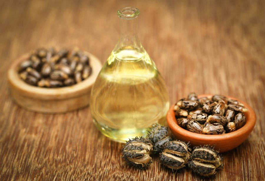 Castor+beans+and+oil+in+a+glass+jar